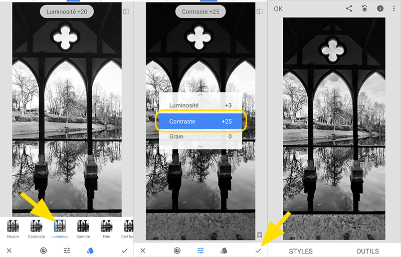 Exemple réglages de paramètre de luminosité contraste grain de l'application Snapseed