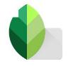 Logo de l'application Snapseed