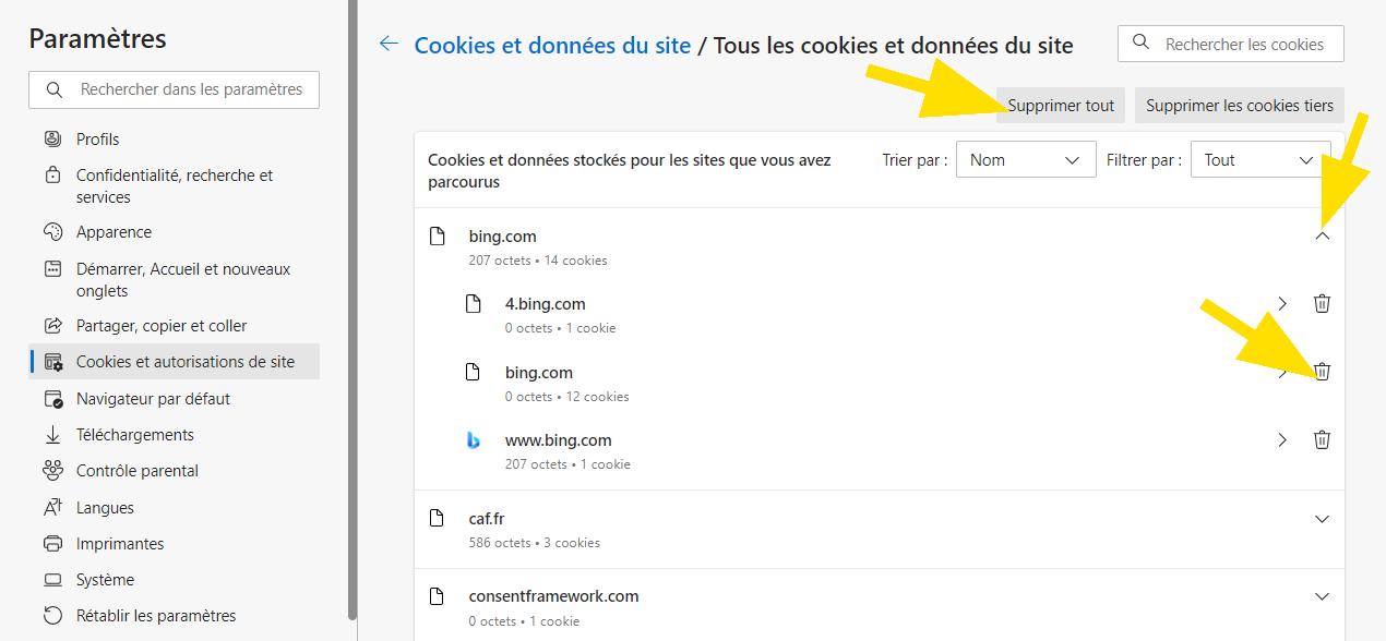 Cliquez sur Supprimer tout ou sur la poubelle située en face du site, pour supprimer les cookies de Microsoft Edge